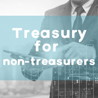 TREASURY FOR NON-TREASURERS: FX Spot Transaction