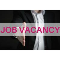 Vacancy in the spotlight: FX & CASH MANAGEMENT ANALYST
