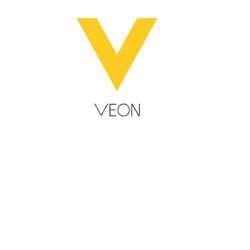 Senior Treasury Analyst @ VEON